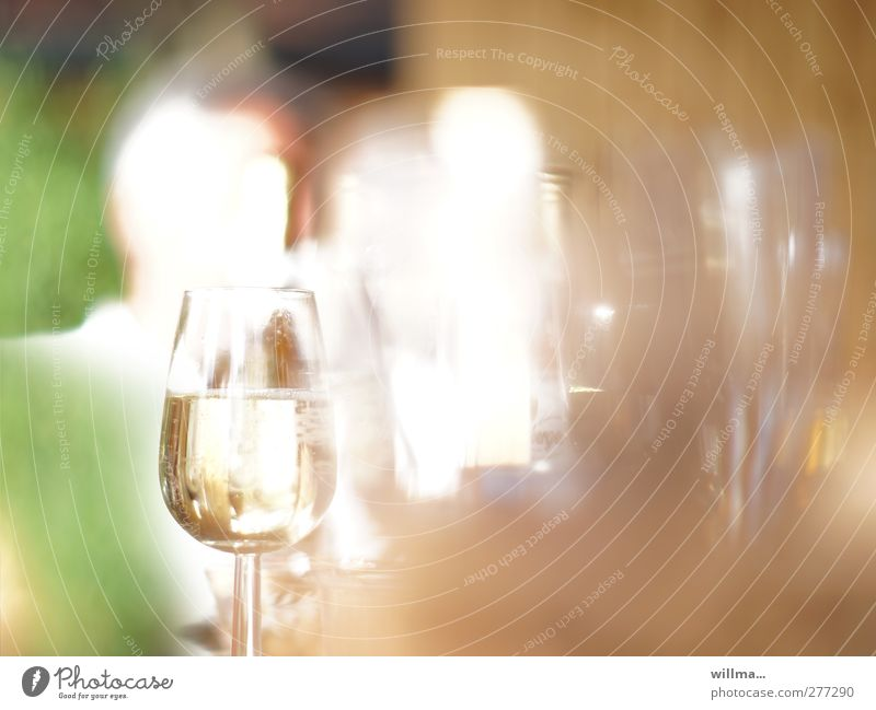 filled champagne glass at a garden party Beverage Alcoholic drinks Sparkling wine Prosecco Feasts & Celebrations Glass Brown Green White Garden festival Blur