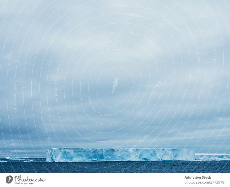Glacier in sea Wall (building) Ice Penguin Ocean Iceberg Landscape Dramatic