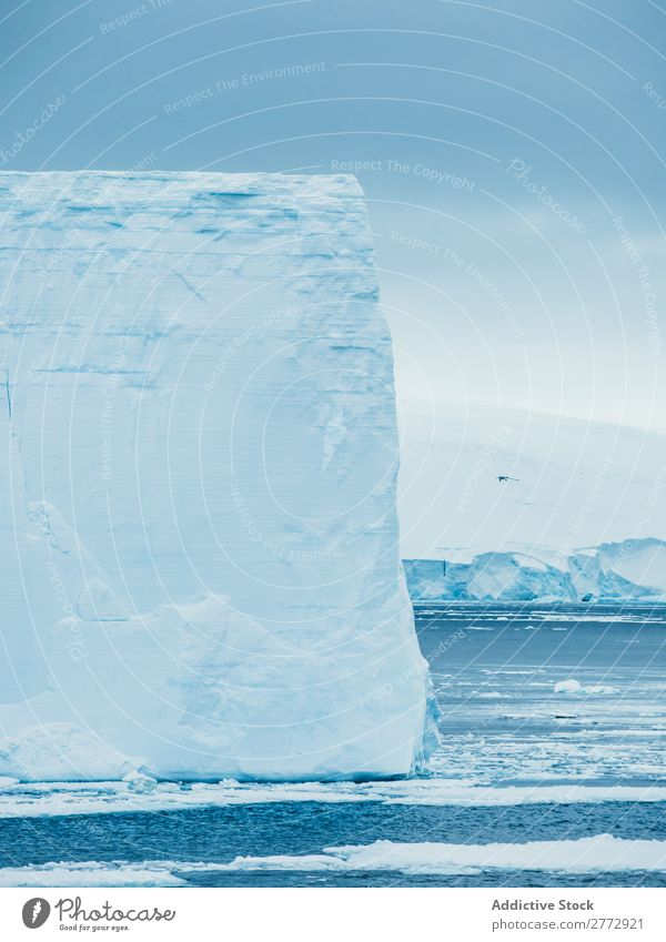 Wall of glacier in sea Glacier Wall (building) Ice Penguin Ocean Iceberg Landscape Dramatic