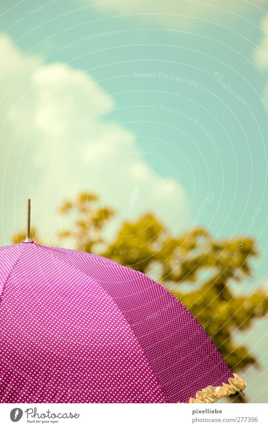 parasol Sky Clouds Sunlight Spring Summer Beautiful weather Warmth Tree Foliage plant Relaxation Friendliness Kitsch Violet Pink Climate Umbrella Point Spotted