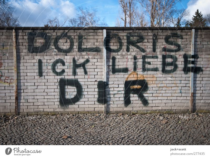 D O L O R I S I L O V E Y O U Clouds Winter Beautiful weather Tree Kreuzberg Brick wall Sidewalk Graffiti Love Happy Large Uniqueness Positive Trashy Moody