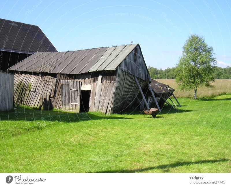 Close the door! There's a draught! Barn Wood Derelict Support Tumble down Meadow Juicy Green Birch tree Wheelbarrow Rust Erz Mountains Architecture Gate Old