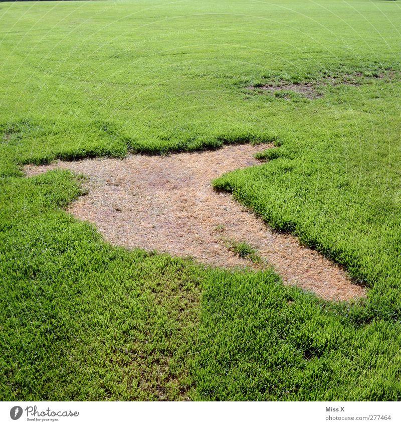grass stain Football pitch Nature Grass Meadow Broken Green Hollow Grass surface Colour photo Exterior shot Pattern Deserted