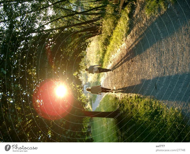 old marriage Sunset Harmonious Married couple Lake Constance Shadow lens flare Lanes & trails Evening In pairs