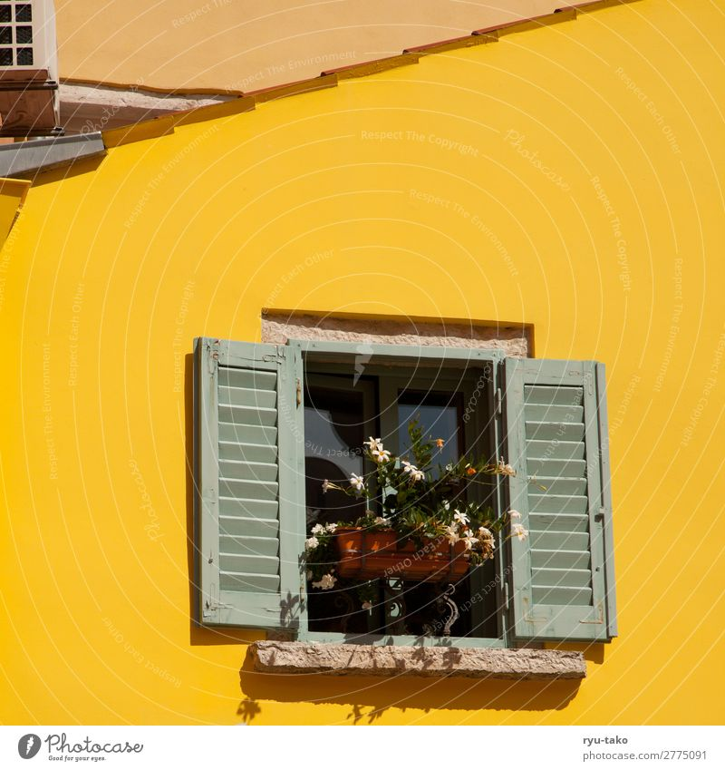 Yellow house with window House (Residential Structure) Sun Window Shutter Summer flowers Pitch of the roof Vacation mood vacation Window box warm detail