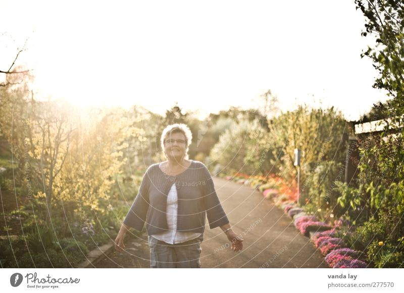 light Woman Adults Life 1 Human being 45 - 60 years Beautiful weather Flower Bushes Lanes & trails Warm-heartedness Leisure and hobbies Colour photo