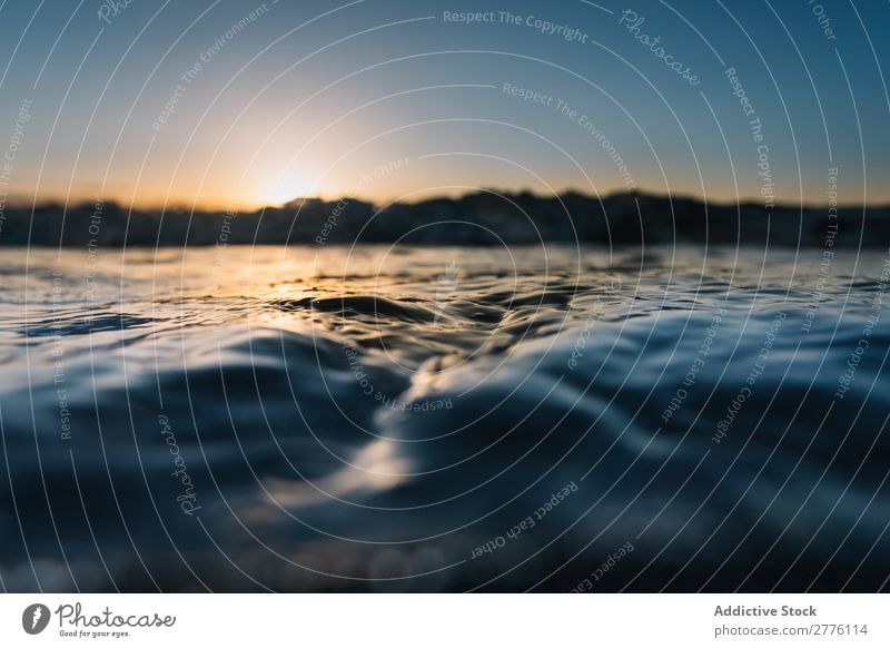 Texture of waving water Background picture Surface Ocean tranquil Consistency Water Ripple Sun Waves Glittering Blue Peaceful Exterior shot Environment Fresh