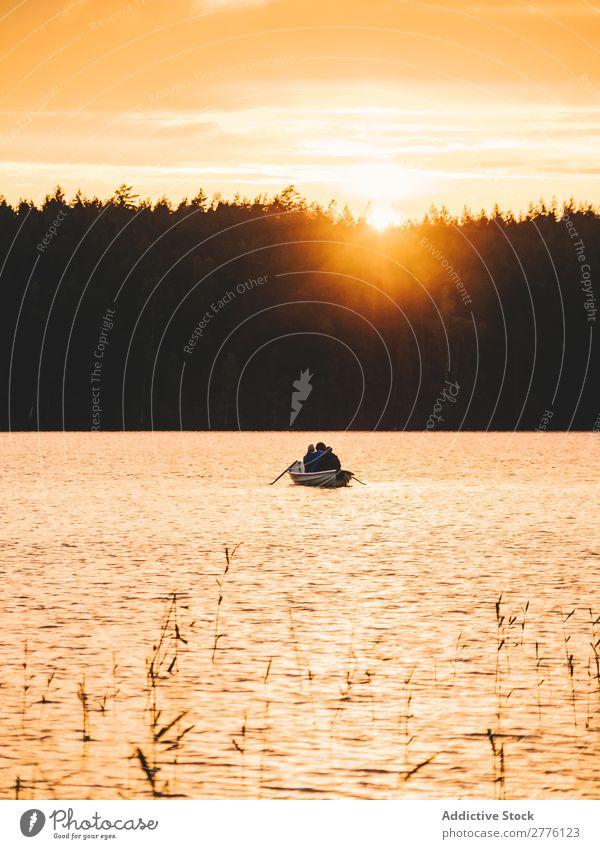 Boat floating on lake in sunset Landscape Watercraft Lake Sunset Traveling Adventure Sailing Forest Colour Lakeside Vantage point Tourism Seasons Wilderness