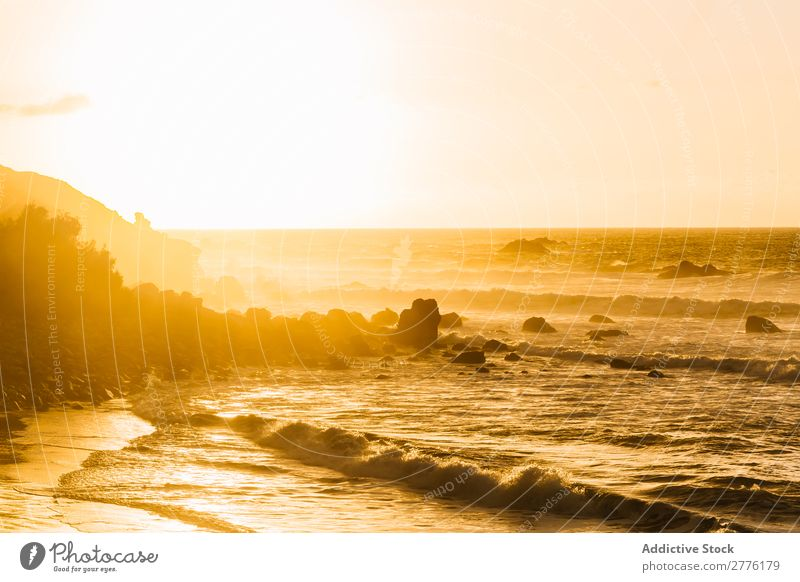 Tide in bright sunlight Landscape Morning Paradise Panorama (Format) Sunrise Coast Dramatic Nature Relaxation Tourism Ocean Vacation & Travel Exotic Summer