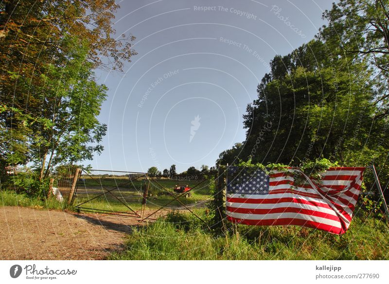 the wild, wild brandenburg Lifestyle Environment Sky Cloudless sky Climate Plant Meadow Field Forest Green Americas USA Flag Fence Gate Highway ramp (entrance)