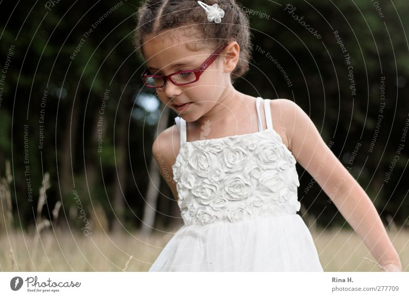 On the meadow IV Girl 1 Human being 3 - 8 years Child Infancy Nature Landscape Weather Beautiful weather Meadow Field Forest Dress Eyeglasses Hair barrette