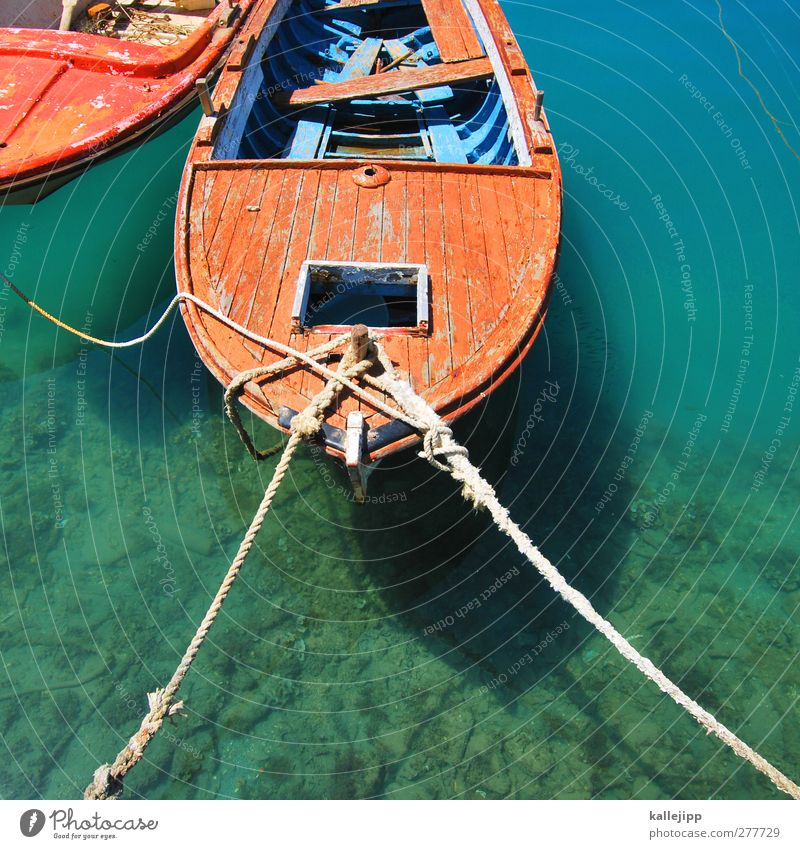 gull's perspective Harbour Navigation Boating trip Motorboat Dinghy Rowboat Rope On board Swimming & Bathing Water wooden boat Adriatic Sea Turquoise