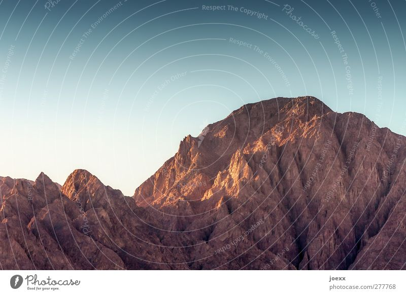 taba Vacation & Travel Far-off places Summer Mountain Landscape Cloudless sky Beautiful weather Large Tall Blue Brown Egypt Sinai peninsula Colour photo