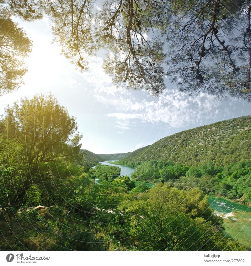 krka Vacation & Travel Tourism Trip Adventure Far-off places Freedom Environment Nature Landscape Plant Animal Water Sunlight River bank Waterfall