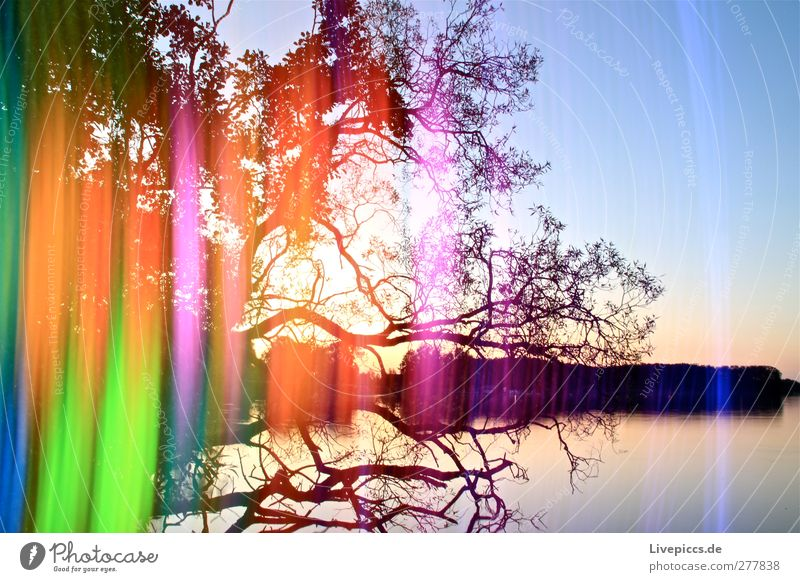 Sky Nature Blue Water Green Summer Tree Plant Sun Leaf Coast Lake Art Orange Illuminate Lakeside