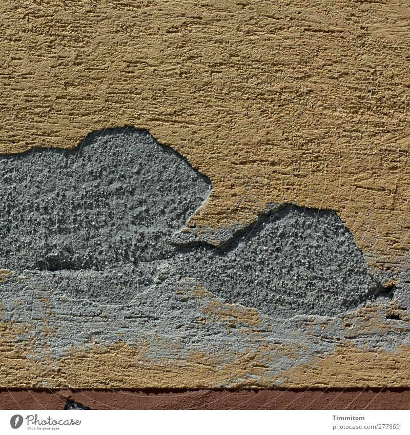Hagnauer house wall Living or residing House (Residential Structure) Wall (barrier) Wall (building) Concrete Brown Gray Plaster Damage shape Animal Colour photo