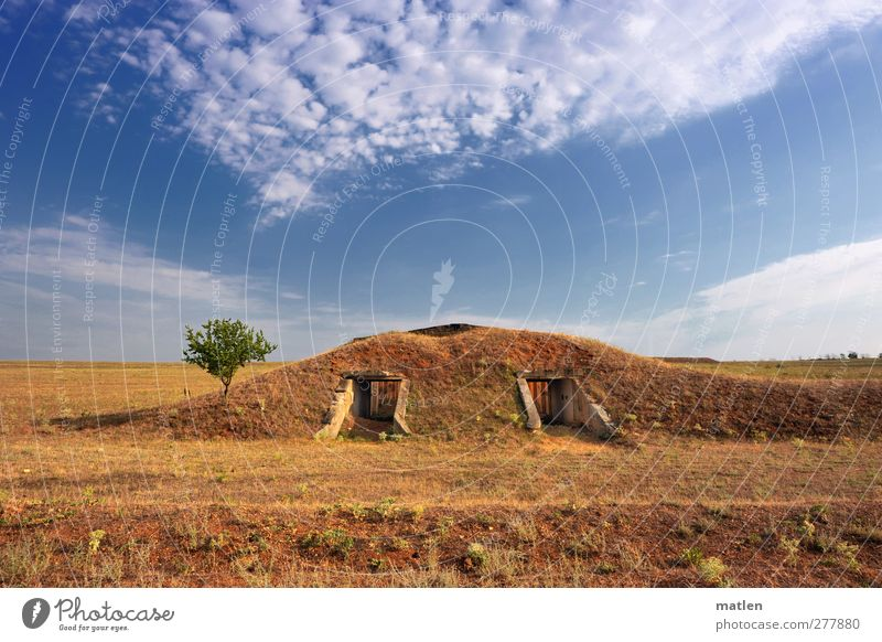 military Landscape Plant Earth Sky Clouds Horizon Sunlight Summer Beautiful weather Tree Steppe Deserted Ruin Dugout Wall (barrier) Wall (building) Blue Brown