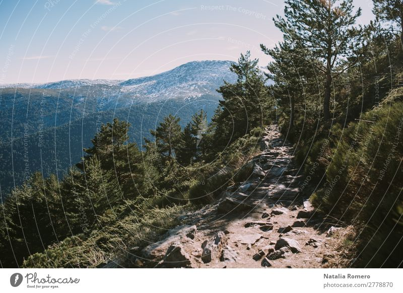 landscape of the sierra on a sunny day Healthy Leisure and hobbies Tourism Trip Adventure Freedom Expedition Winter vacation Environment Nature Landscape Plant