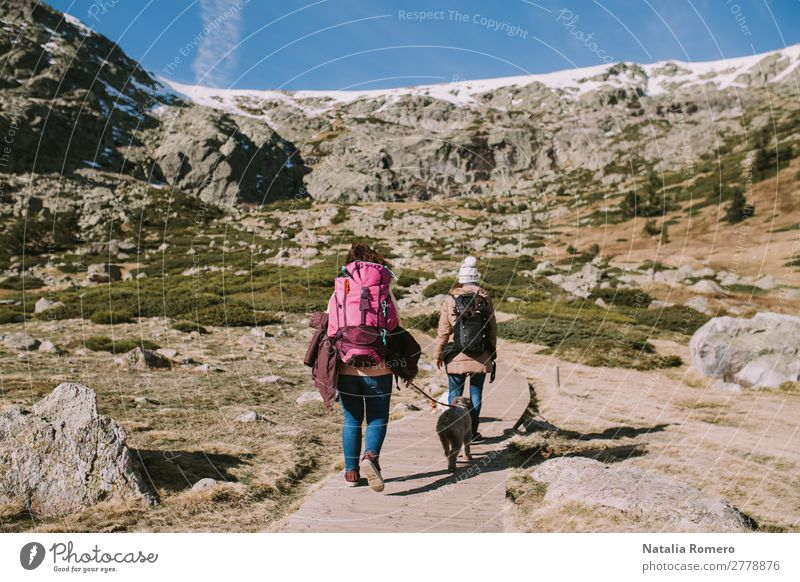 Two womans accompanied by their dogs walk along in the meadow Beautiful Life Leisure and hobbies Trip Adventure Freedom Mountain Hiking Human being Feminine