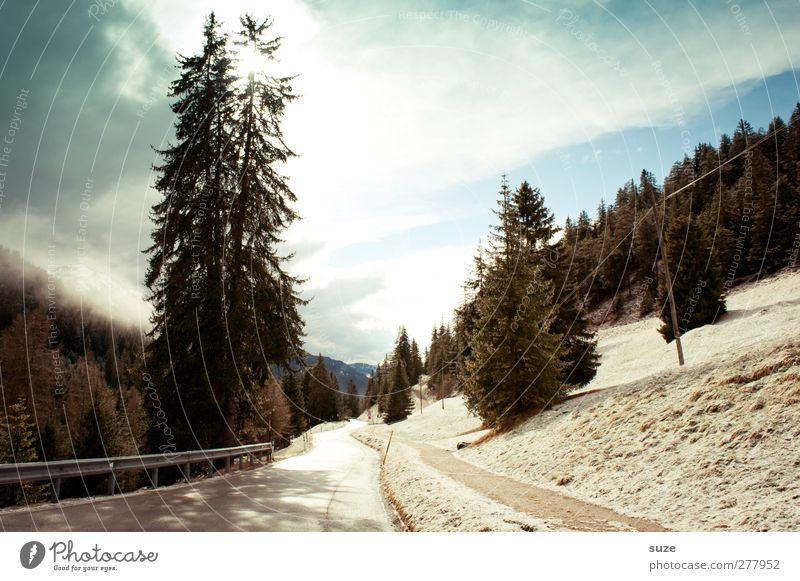 sunbathe Vacation & Travel Snow Winter vacation Mountain Environment Nature Landscape Elements Sky Clouds Climate Beautiful weather Tree Forest Rock Alps