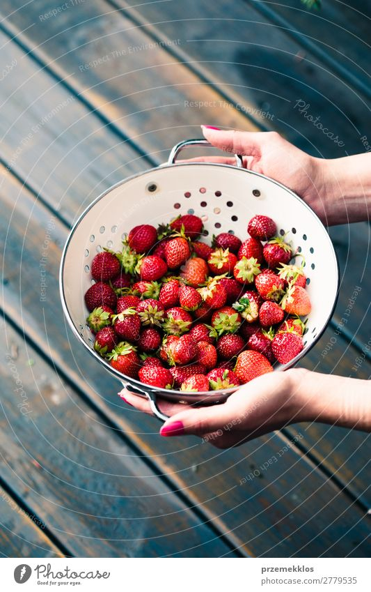Female hand holding bowl of fresh strawberries Fruit Vegetarian diet Bowl Summer Table Woman Adults Hand Nature Wood Fresh Delicious Natural Juicy Red food