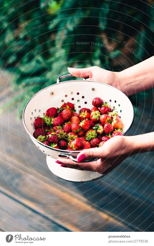 bowl of fresh strawberries sprinkled raindrops over wooden table Woman Nature Summer Red Hand Adults Wood Natural Fruit Fresh Table Delicious Vegetarian diet