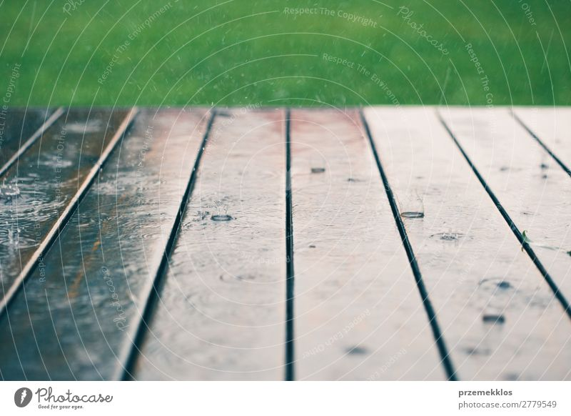 Wood planks while raining in perspective with grass at the top. Summer Weather Rain Drop Wet backdrop background board Plank Veranda raindrop Seasons Splash