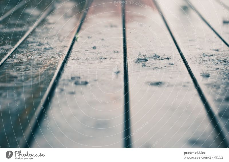 Closeup of wood planks while raining in perspective. Summer Weather Rain Wood Line Drop Wet Perspective backdrop background board Plank Veranda raindrop Seasons