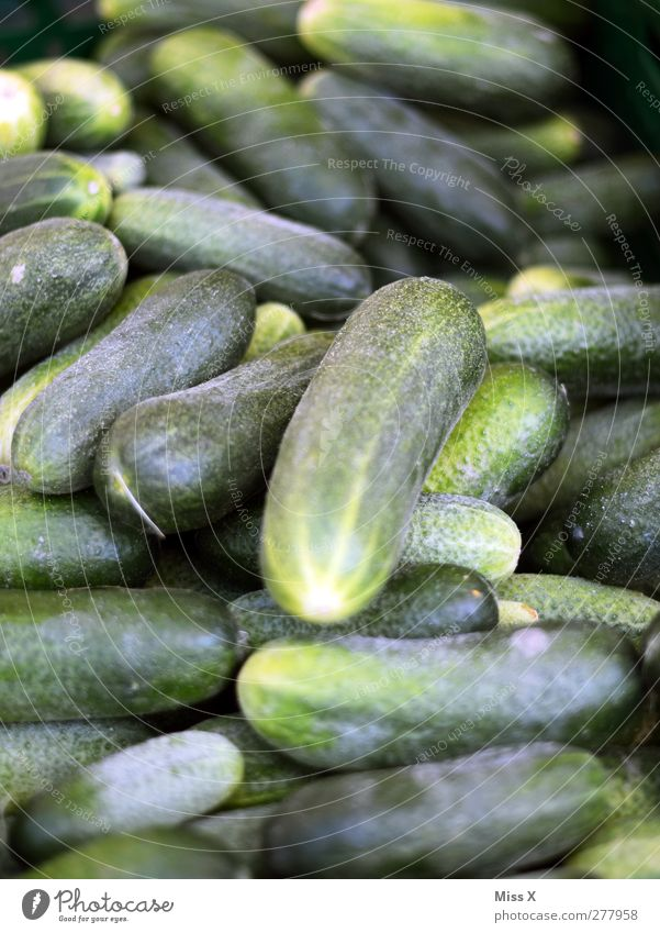 cucumber Food Vegetable Nutrition Organic produce Vegetarian diet Sour Green Gherkin Cucumber Greengrocer Vegetable market Colour photo Close-up Deserted