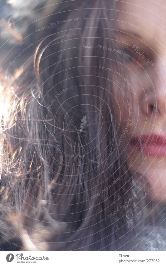 The sun has a trapdoor Feminine Woman Adults Head Hair and hairstyles 1 Human being Brunette Long-haired Freeze Solidify Blind Colour photo Exterior shot