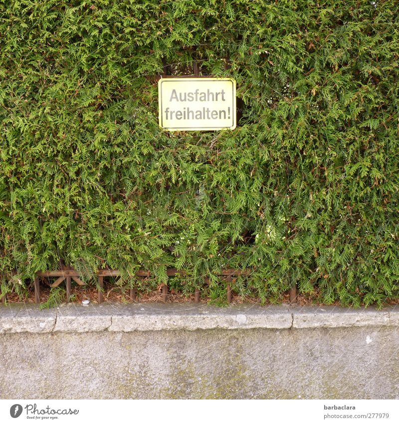 Where there's a will, there's a way. Bushes Hedge Wall (barrier) Wall (building) Characters Signs and labeling Signage Warning sign Road sign Prohibition sign