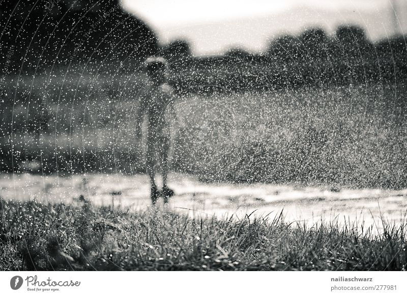 rain Human being Child Toddler Boy (child) Infancy Body 1 3 - 8 years Nature Landscape Plant Water Drops of water Grass Field Playing Stand Happiness Happy