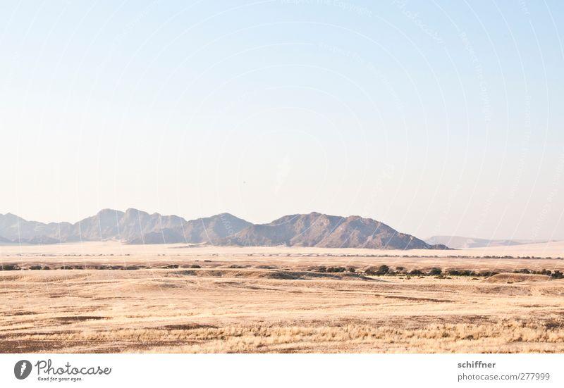 Nature Landscape Far-off places Environment Mountain Grass Desert Cloudless sky Grassland Steppe Safari Namibia Overview Namib desert Sossusvlei Dry river