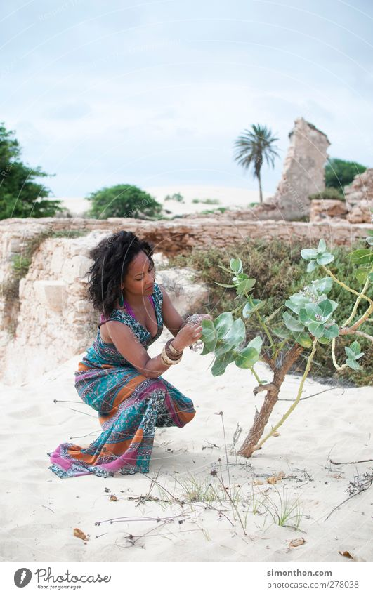 Africa Vacation & Travel Far-off places Safari Expedition Summer Summer vacation Sun Beach Island Human being Young woman Youth (Young adults) 1 Coast Desert