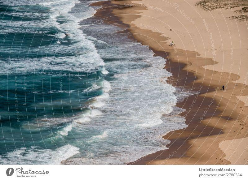 Breakers Nature Landscape Elements Sand Water Summer Waves Coast Beach Ocean Tasman sea Pacific Ocean Blue Brown Turquoise White Dangerous Wet Foam Colour photo