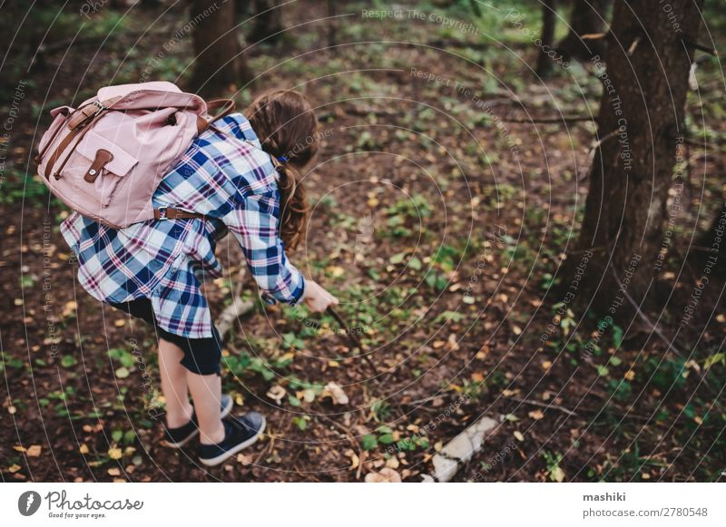 happy kid girl exploring summer forest Child Vacation & Travel Nature Summer Plant Green Tree Forest Lifestyle Happy Playing Freedom Hiking Park Fog Infancy