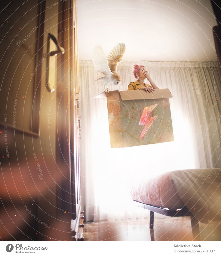 Woman with pink hair levitates in box with owl Fantasy Fly in air Above Bed Bedroom Cardboard box Box Sit Interior shot Vertical Mystic Lightning Sign Owl Bird