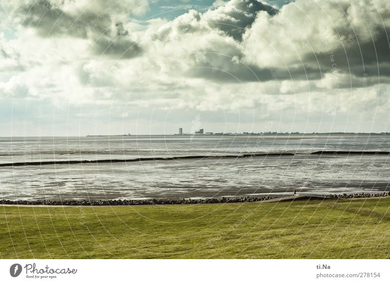 the mighty St. dike Landscape Air Water Clouds Storm clouds Spring Summer Autumn Grass North Sea Mud flats Observe Relaxation Blue Gray Green Tourism Dike