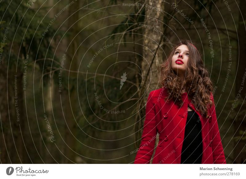 Human being Youth (Young adults) Red Loneliness Forest Feminine Young woman Observe Curl Brunette Coat Fairy tale Timidity Little Red Riding Hood