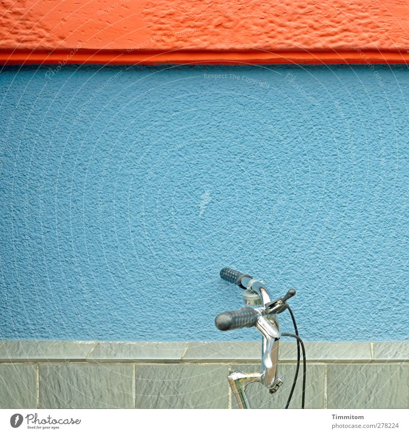 Let's go green! Bicycle Heidelberg House (Residential Structure) Wall (barrier) Wall (building) Stone Metal Esthetic Clean Blue Gray Red Stand Lean Colour photo