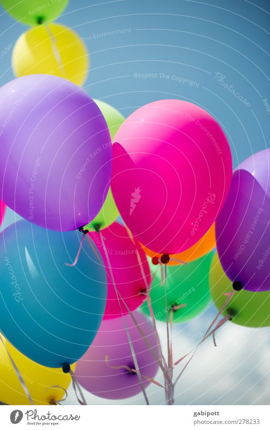 Blue Green Joy Happy Party Air Feasts & Celebrations Pink Birthday Happiness Decoration Balloon Round Violet Joie de vivre (Vitality) Positive