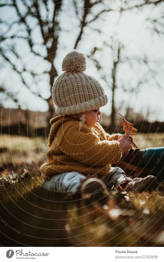 Baby playing in woods Child Human being Nature White Leaf Forest Winter Girl Autumn Warmth Yellow Environment Feminine Happy Together Happiness