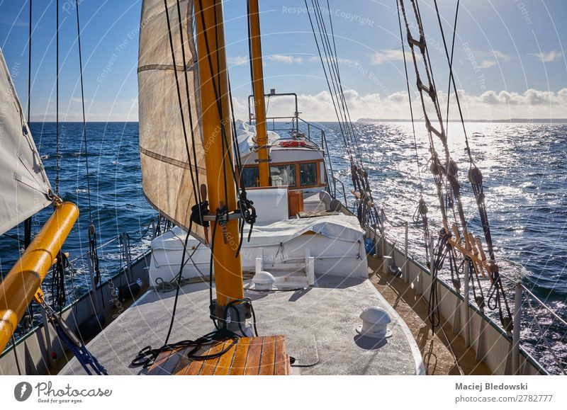 Old schooner sailing against the sun. Lifestyle Vacation & Travel Trip Adventure Freedom Cruise Summer Sun Ocean Waves Water Sky Horizon Beautiful weather