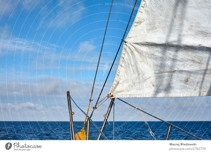 Old schooner sail with horizon over water. Lifestyle Vacation & Travel Trip Adventure Far-off places Freedom Cruise Summer Summer vacation Ocean Sailing Sky