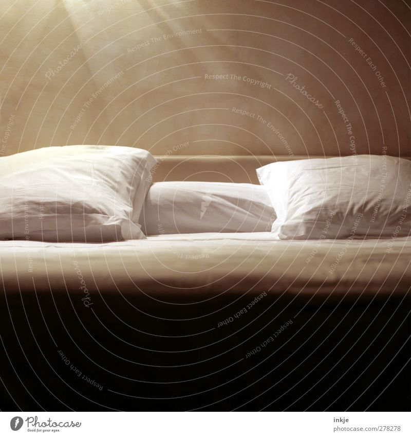 White Relaxation Calm Emotions Lifestyle Brown Moody Living or residing Break Bedclothes Bed Well-being Harmonious Safety (feeling of) Cuddly Bedroom