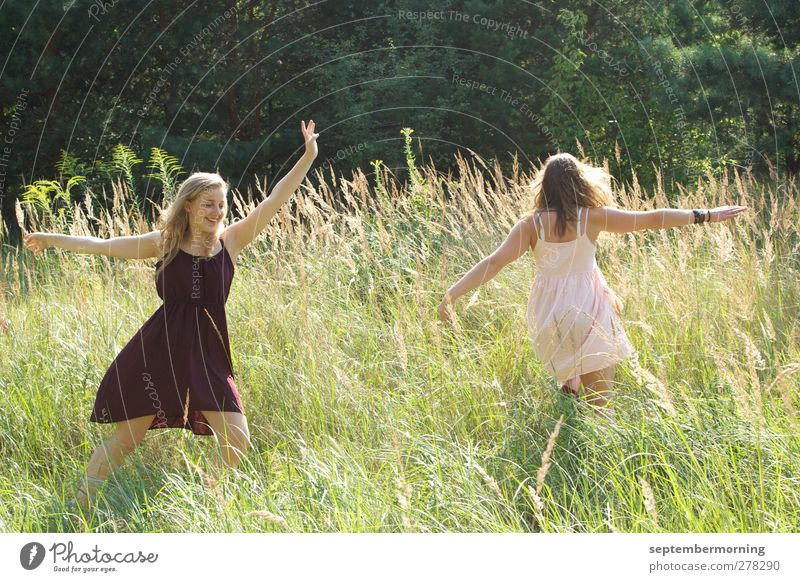 A feeling of summer II Feminine Youth (Young adults) 2 Human being 18 - 30 years Adults Nature Summer Meadow Dress Brunette Blonde Dance Happiness Fresh Natural