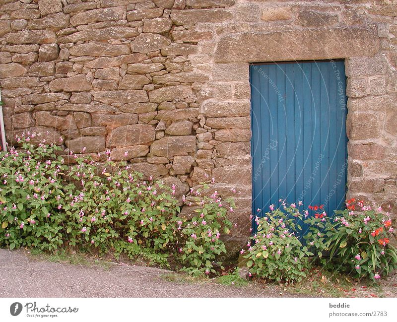 Flower Blue Vacation & Travel Stone Wall (barrier) Door Brittany