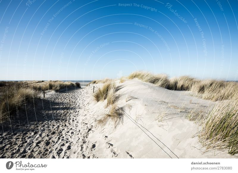 Vacation & Travel Nature Blue White Landscape Ocean Relaxation Winter Far-off places Beach Lanes & trails Coast Tourism Island Cloudless sky North Sea