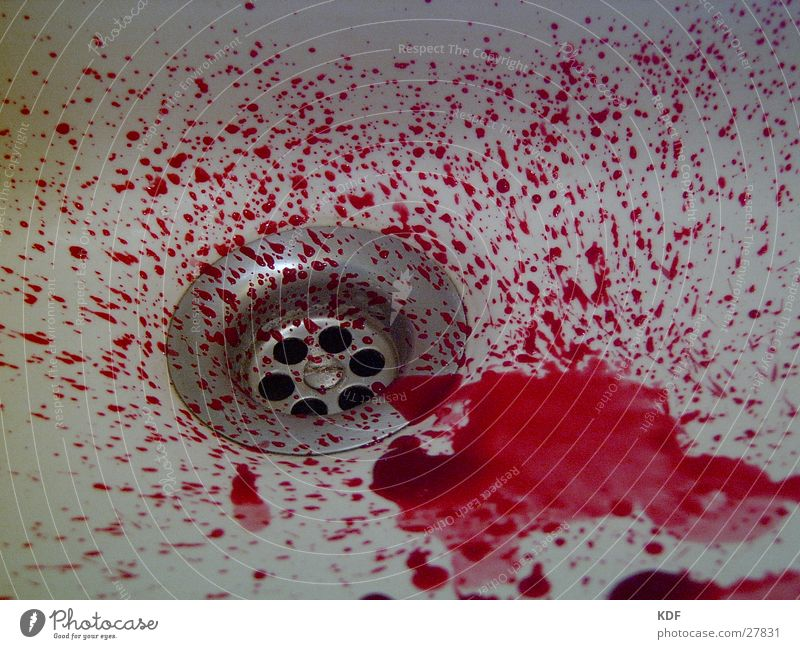 Red Blood Drainage Brutal Photographic technology