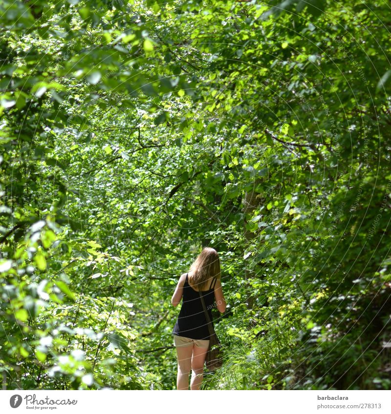 Human being Woman Nature Youth (Young adults) Green Summer Tree Calm Adults Forest Relaxation Environment Young woman Healthy Going 18 - 30 years